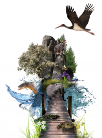 4-tag-der-nachhaltigkeit-logo_kl